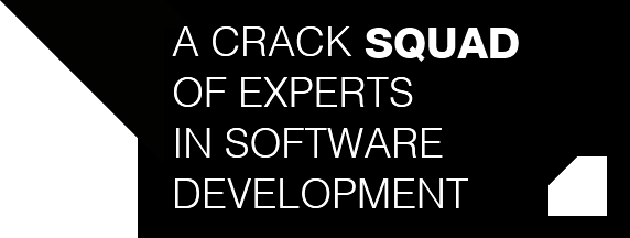 A crack **squad** of experts in software and developement